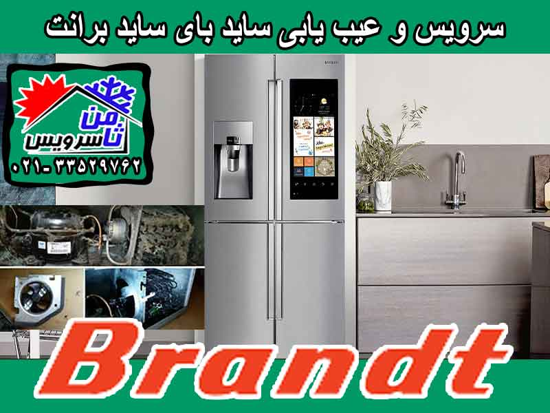 Brandt side by side trouble shooting & service at home in Tehran & Mashhad