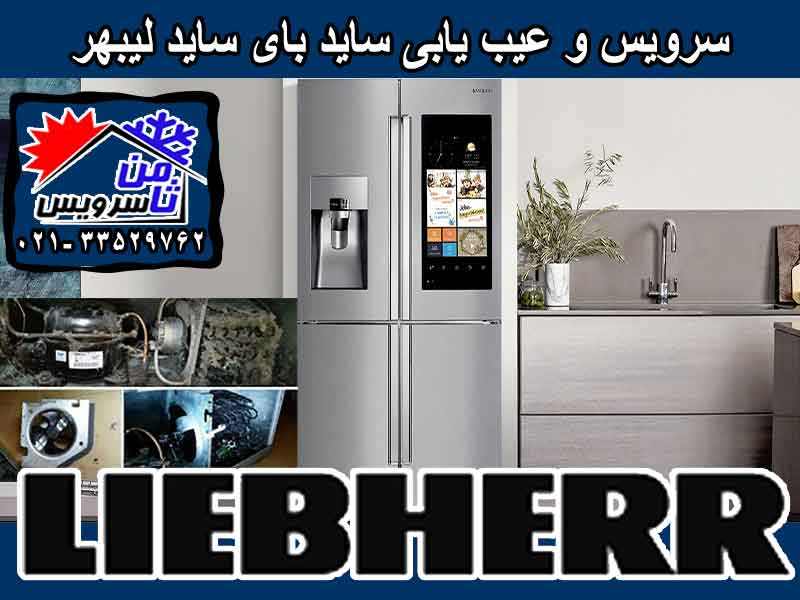 Liebherr side by side trouble shooting & service at home in Tehran & Mashhad